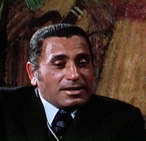 Muhammad Husayn Haykal
